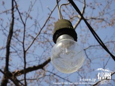 ライトアップ用の電球
