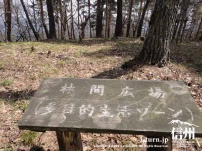 林間広場(多目的生活ゾーン)