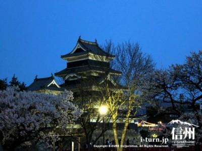 暗くなる前の松本城と桜