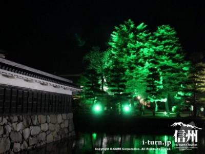 緑色にライトアップ