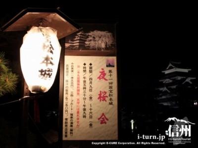 提灯と夜桜会の看板