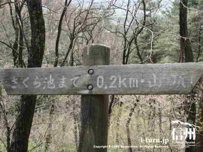 標識 そろそろ桜池