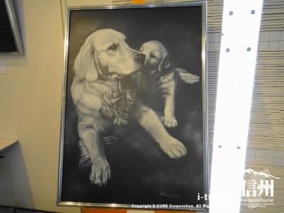 キャンソン黒地に白のパステルで描かれた作品