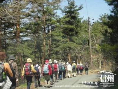 山道をゾロゾロ歩く