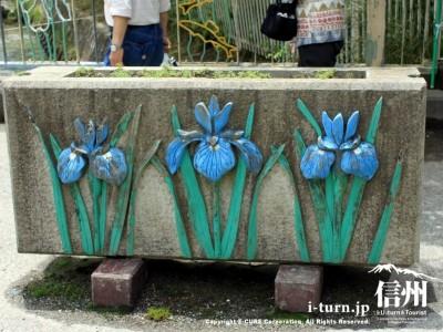 あやめの花壇(紫)