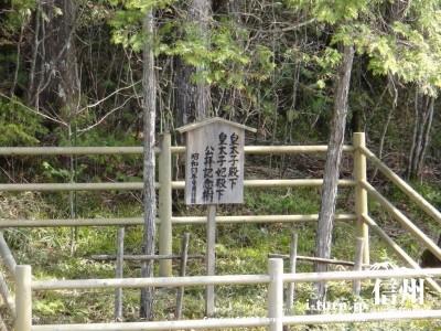 平成天皇が皇太子時代に植えた記念樹
