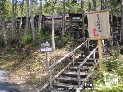 この階段を登れば駅です