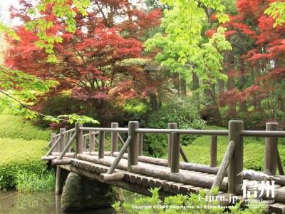 蓮華池の橋