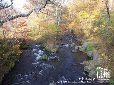 軽井沢の渓流紅葉