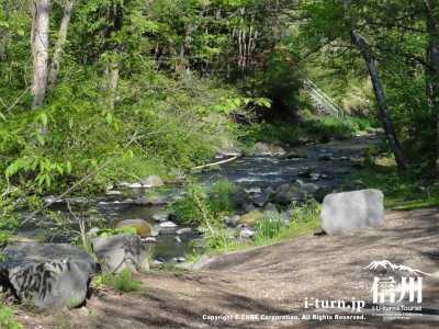 早春の遊歩道と湯川