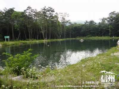 自由釣り場3号池