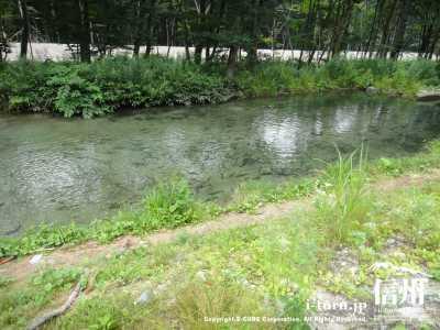 渓流釣り場