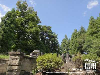 本堂横には昔からの墓地