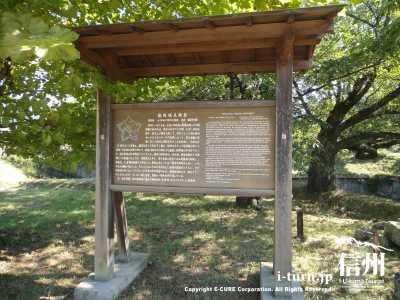 龍岡城五稜郭の説明