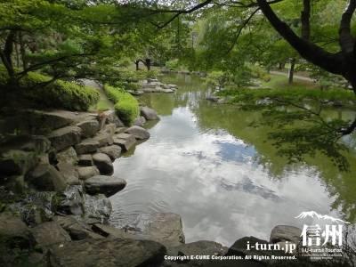 滝から池を