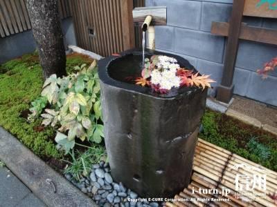 苔泉亭「萩月庵」千ひろの水鉢