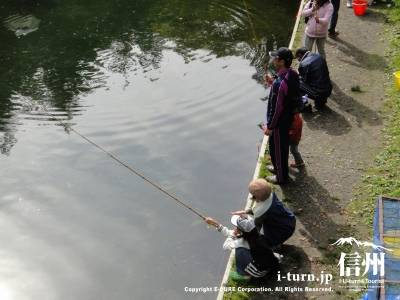 釣りをしています