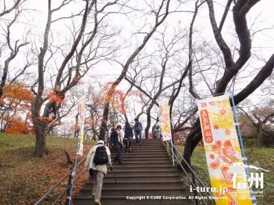 高遠城址公園内へ続く階段