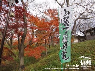 高遠城址公園の紅葉したかえでとのぼり旗