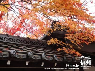 高遠の紅葉と日本瓦がキレイです