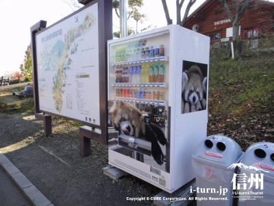 レッサーパンダの自動販売機
