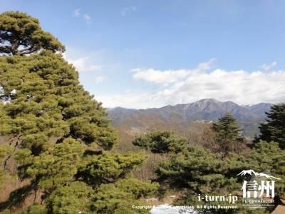 北側の風景は木々に隠れている