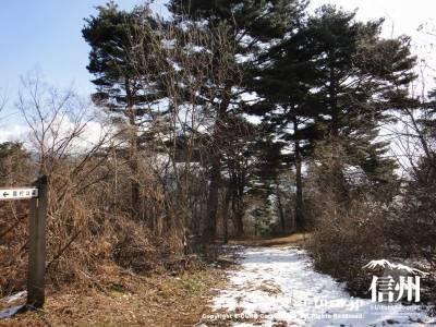 田溝池へと続く遊歩道