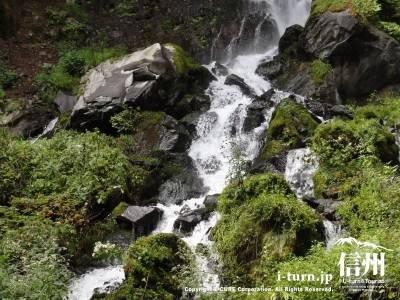 千ケ滝の滝壷ⅵ滝の流れと苔