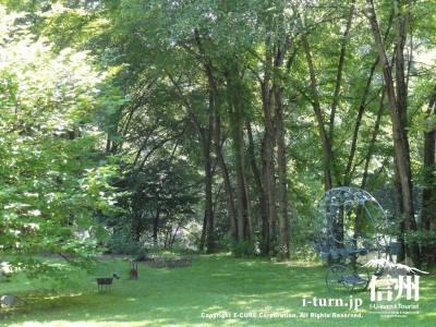 森の広場Ⅰ