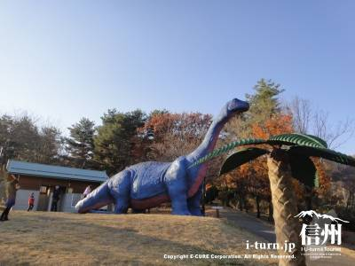 ケティオサウルス