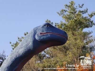 ケティオサウルスの顔