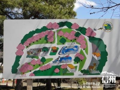 半分の園内マップ