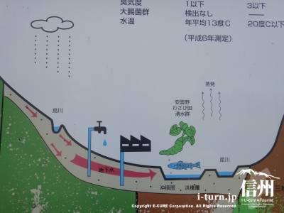 湧水循環図