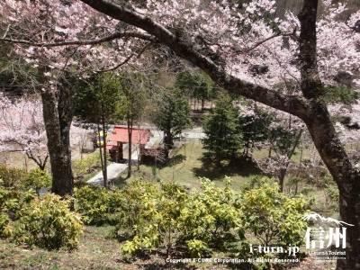 弘妙寺の入口を高台の境内からの眺め