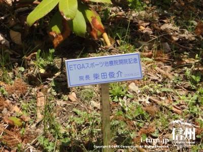 ETGAスポーツ治療院開院記念の植樹