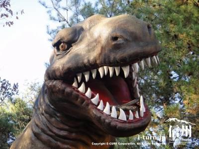 アロサウルスのアップ