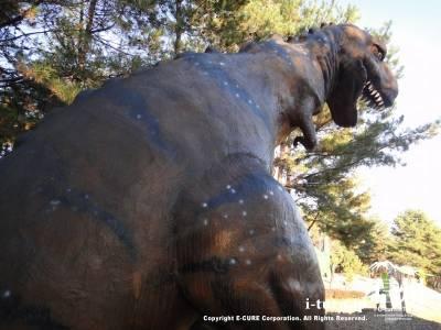 アロサウルスの背中