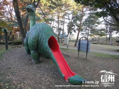 プラティオサウルスの背中
