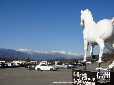 白馬の目線の先に駐車場