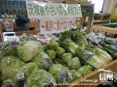 被災地の野菜