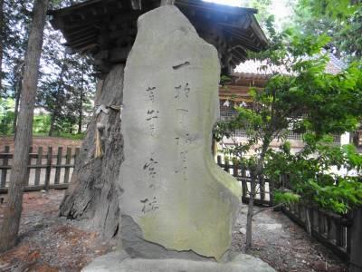 何か書いてある石碑