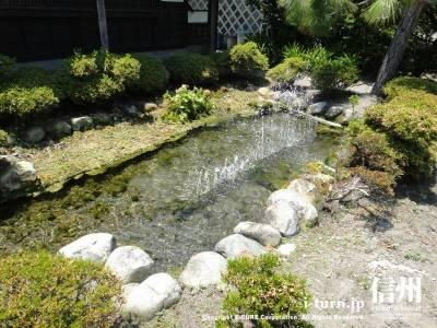 噴水のある池