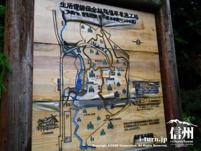 散策路地図