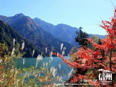 紅葉とススキと山とエメラルドグリーンの湖