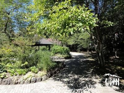 ピクチャーレスガーデンの庭内Ⅱ