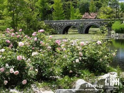 ローズガーデンと薔薇と石橋Ⅱ