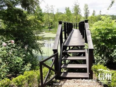 サンクンガーデンへの橋