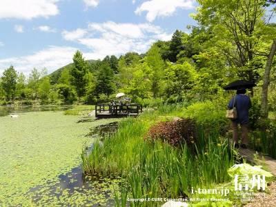 湖畔の外周園路Ⅱ
