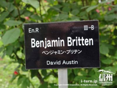 Benjamin Bretten(ベンジャミン・ブリテン)