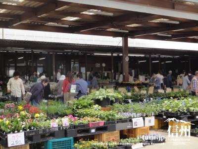 屋外には花や野菜の販売